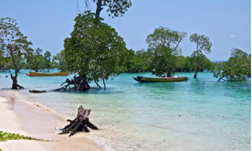 andaman nicobar tour packages